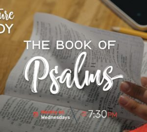 Scripture Study: The Book Of Psalms