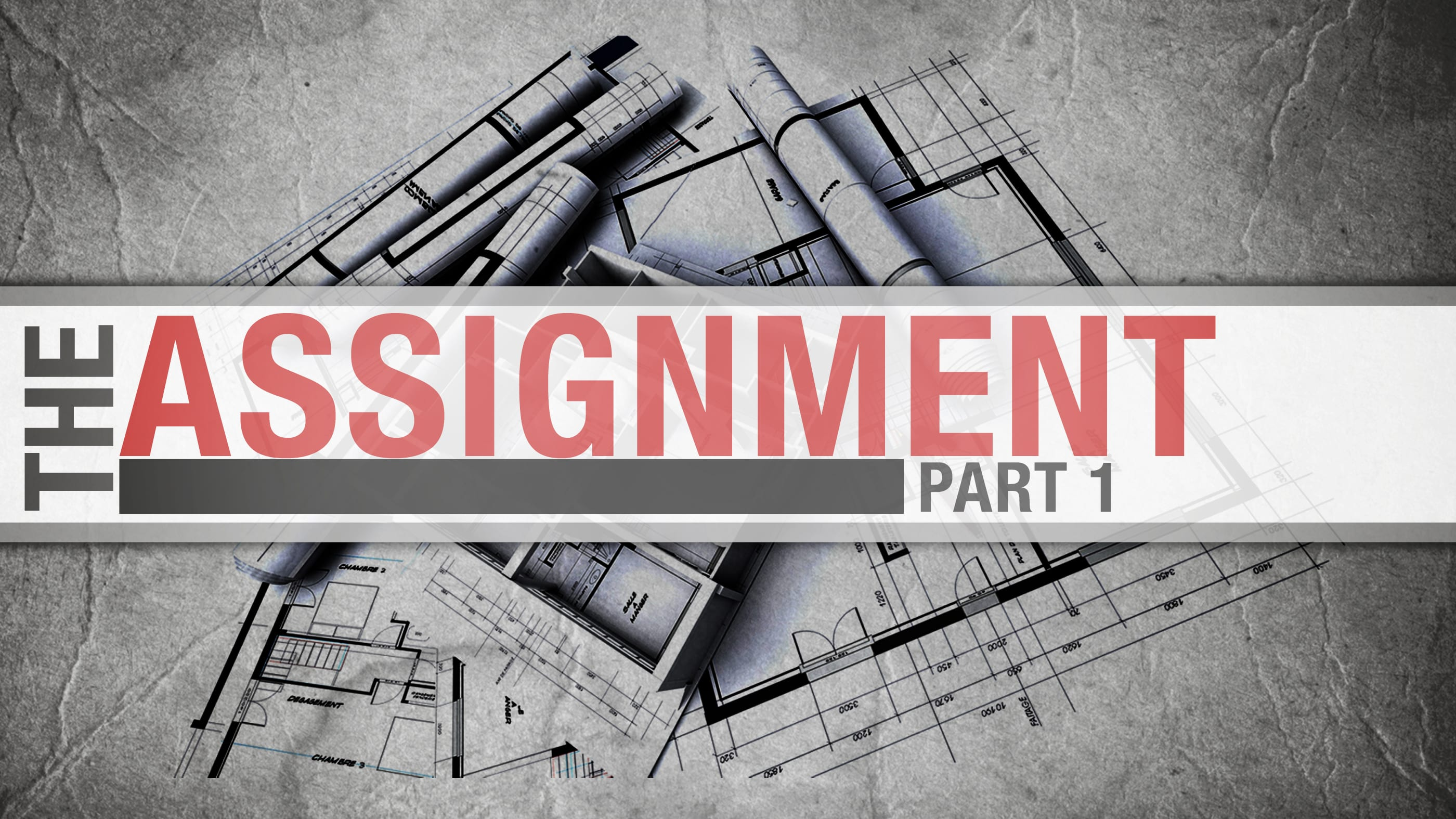 The Assignment, Part 1